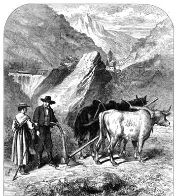 Contadini della Valle di Susa. Incisione in legno di Anonimo (sec. XIX).